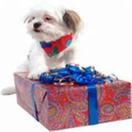Дарим подарки правильно