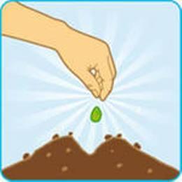 Советы по выращиванию хорошего урожая моркови