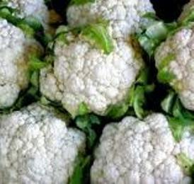 Причины плохого урожая цветной капусты