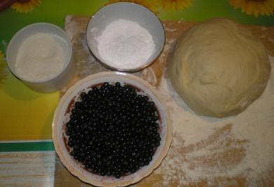 Рецепт пирожков со свежей черникой