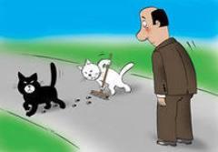 Суеверия, связанные с поведением животных
