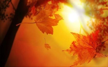 Рыжая осень - прощание