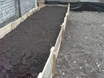 Весенние советы для дачников и огородников