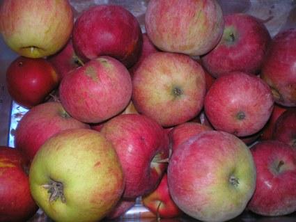 Рецепт приготовления яблочно-брусничного джема