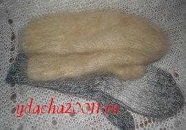 Целебные свойства шерсти животных