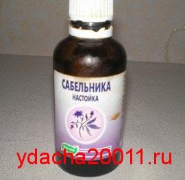 Сабельник - лечебные свойства и применение