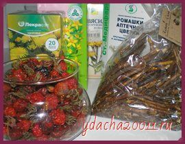 Рецепты травяных сборов для лечения панкреатита