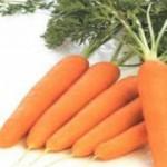 Морковь для нашего здоровья
